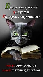 Бухгалтерские услуги в г. Пологи, Запорожской обл.
